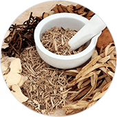 Ginger Rhizomes Extract